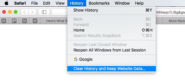 Limpar histórico e manter os dados do site no Safari